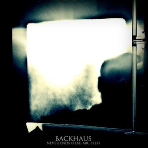 Image for 'Never Ends (Backhaus feat. Mr. Self)'