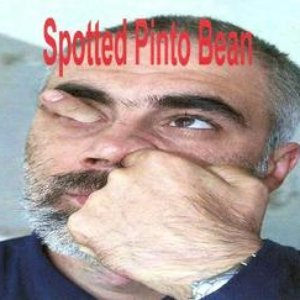 Image for 'spotted pinto bean'