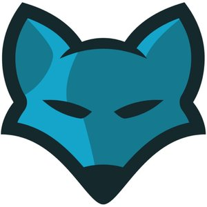 Image for 'BlueFoxMusic'