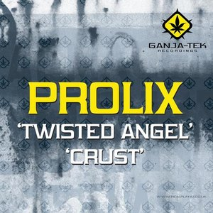 Image pour 'Twisted Angel / Crust'