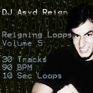Image for 'Reigning Loops, Vol. 5'
