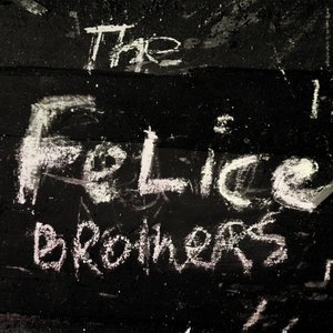 Immagine per 'The Felice Brothers'