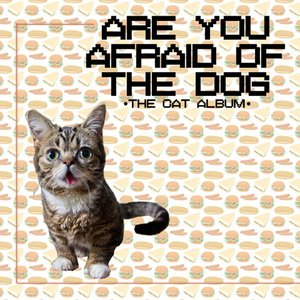 Image for 'The Cat Album'