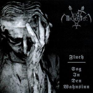 Image for 'Fluch / Sog in den Wahnsinn'