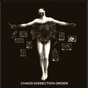 Image for 'Chaos Dissection Order'