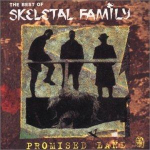 Imagem de 'Promised Land: the Best of Skeletal Family'