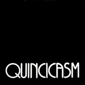 Image for 'Quincicasm'