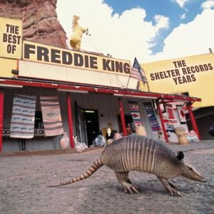 Image for 'The Best Of Freddie King: The Shelter Years'