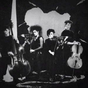 Image for 'The Venomettes'