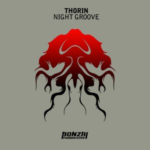 Image for 'Night Groove'