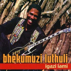 Image for 'Igazi Lami'