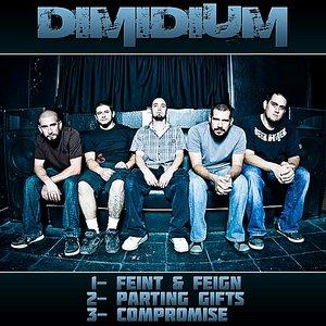 Bild für 'Demo 2010'