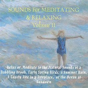 Image pour 'Sounds For Meditating & Relaxing Volume 2'