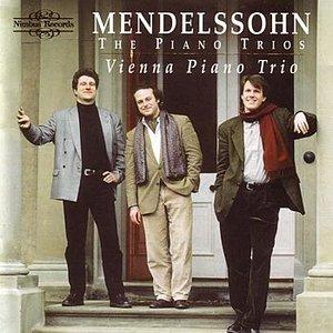 Image for 'Piano Trio In D Minor, Op. 49: Molto Allegro Agitato'