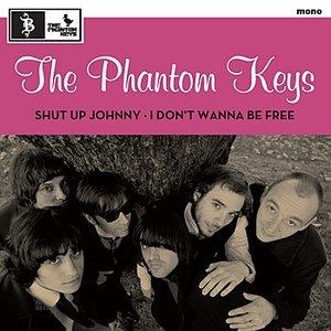 Image for 'the phantom keys'