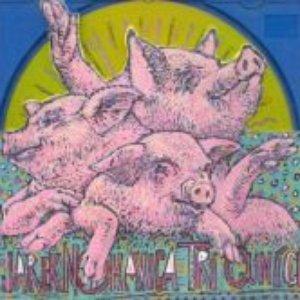 Bild für 'Tři čuníci'