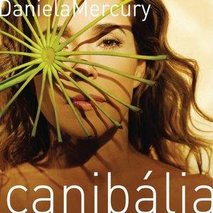 Image pour 'Canibália'