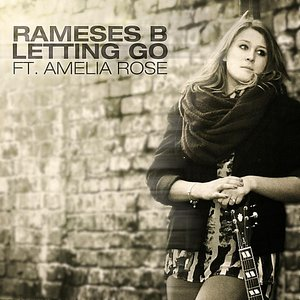 Image for 'Letting Go (feat. Amelia Rose)'