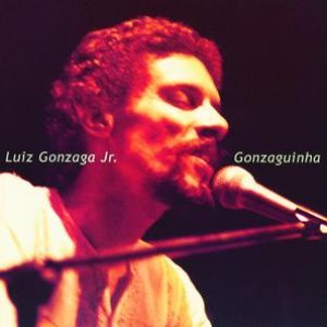 Image for 'Luiz Gonzaga Jr. (Gonzaguinha)'