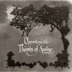 Image for 'Opportunistic Thieves of Spring'