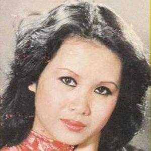 Image for 'Sơn Ca'