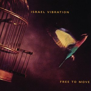 Image for 'Free to Move'