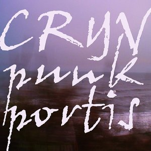 Image for 'punk portis'