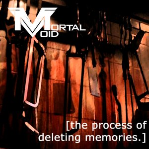 Image for 'The Process of Deleting Memories'