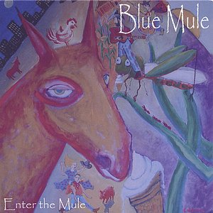 Image for 'Enter The Mule'