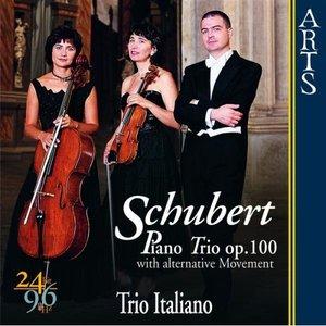 Image for 'Piano Trio In E Flat Major Op. 100 D 929: III. Scherzo (Allegro Moderato)'