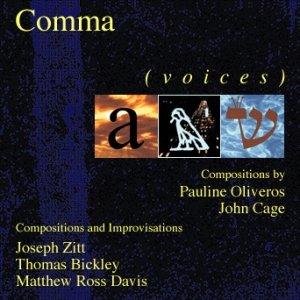 Bild für '(voices)'