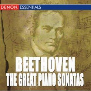 "Image for 'Sonata No. 14 ""Moonlight"", Op. 27: I. Adagio sostenuto'"