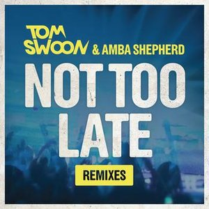 Image for 'Not Too Late (Josef Belani Remix)'