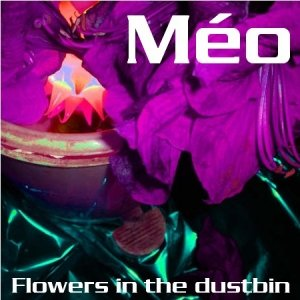 Image for 'Flowers in the Dustbin'