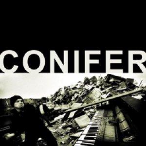 Bild für 'Conifer'