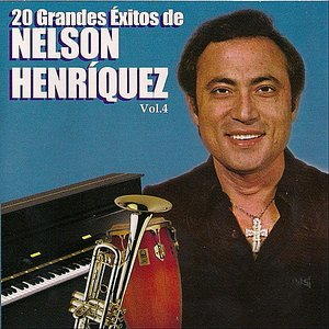 Image for '20 Grandes Exitos de Nelson Henriquez, Vol. 4'