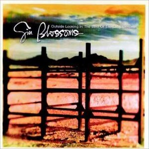 Image for 'The Best of Gin Blossoms'