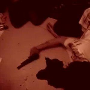 Bild für 'Blood of the Ascended'