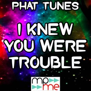 Image for 'I Knew You Were Trouble - A Tribute to Taylor Swift'