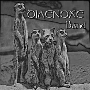 Image for 'Diaenoxe Band'