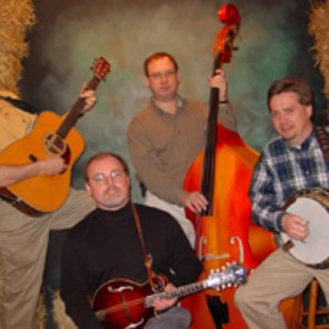 Image for 'A Bluegrass Tribute'