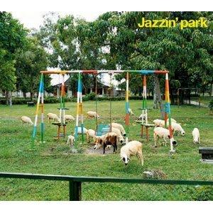 Image for 'Jazzin' park'