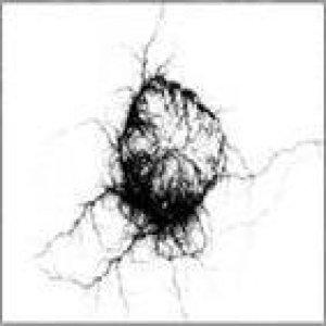 Image for 'Seismik Electrik Magick'