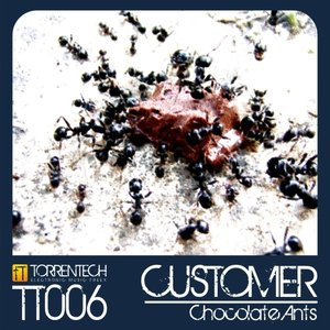 Image for 'Chocolate Ants (TT006)'