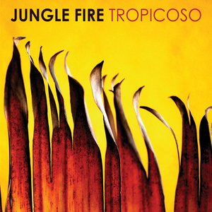 Image for 'Tropicoso'