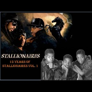 Image for '15 Years of Stallionaires, Vol.1'