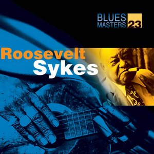 Image for 'Blues Masters Vol. 22'
