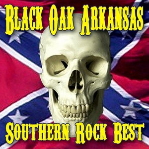 Image for 'Southern Rock's Best'