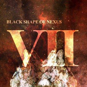 Immagine per 'VII'