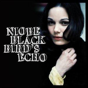 Image for 'Blackbird's Echo'
